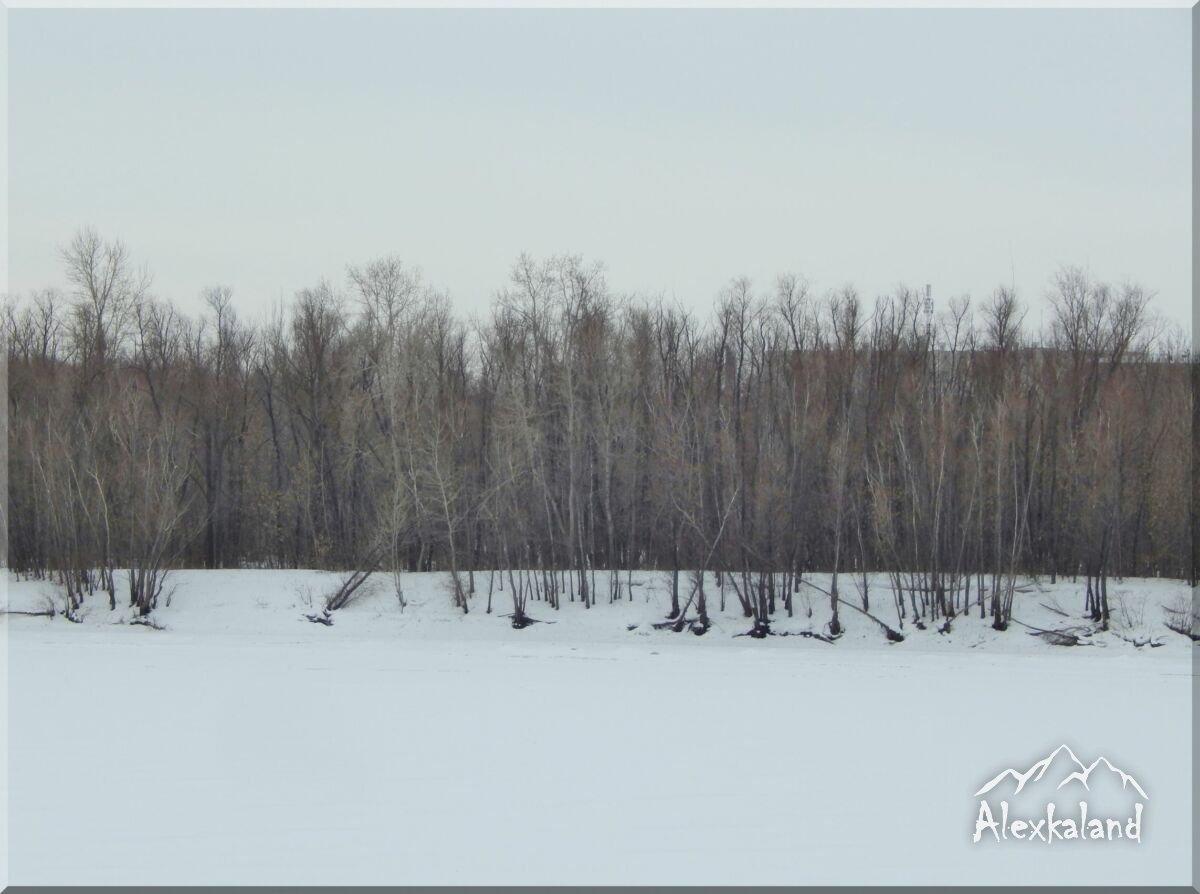 Irtis folyón található magányos sziget, jégbe zárva